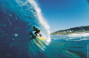 surfing picture